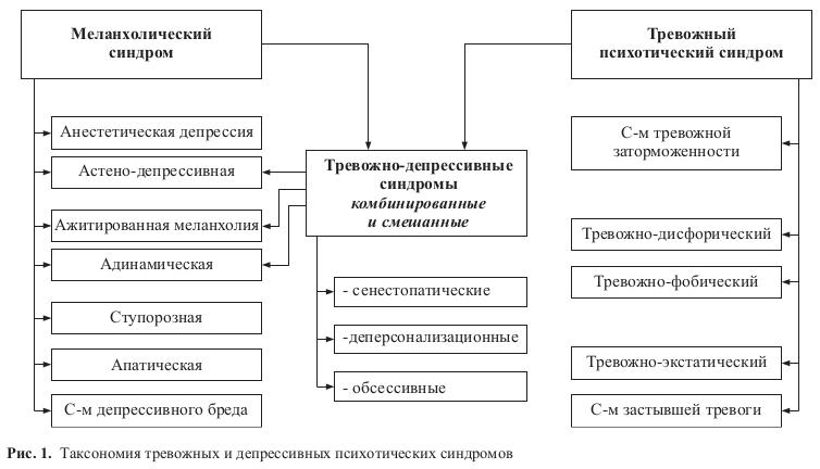 04-sav-ris1